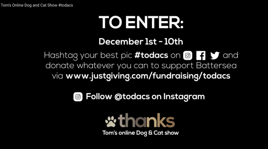 Tom's Online Dog & Cat Show - To Enter