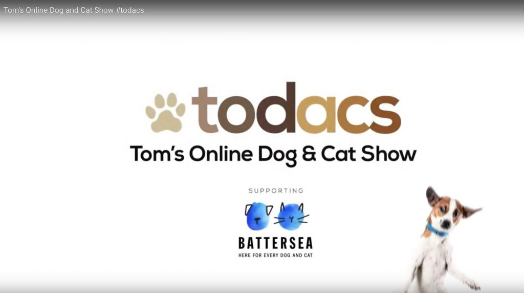 Online Dog & Cat Show
