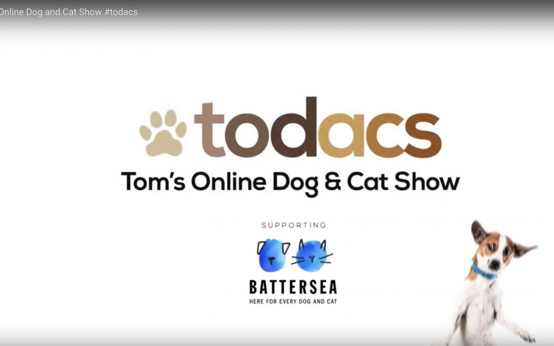 Charity – Online Dog & Cat Show
